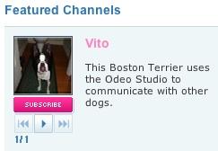 Vito's Friends